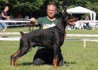 OBI WAN KENOBI DE GRANDE VINKO - CHAMPION CLASS WINNER & CLUB WINNER FOR BLACK MALES - CAR KONSTANTIN CLUB SHOW
